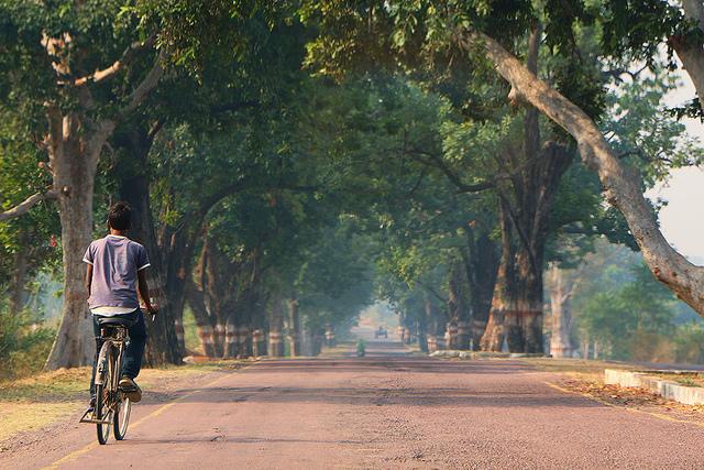 Pic 2 - Nature. Offline